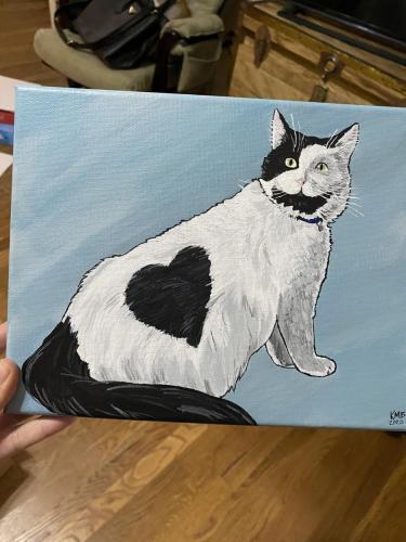 Nelly Cat Pet Portrait