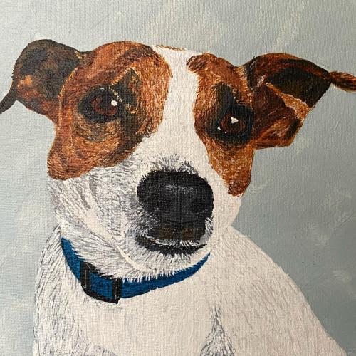 Jack Russell Dog Pet Portrait