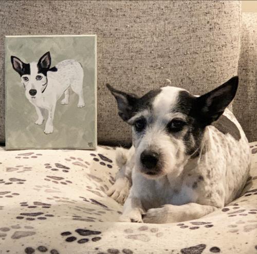 Fenley Grace Dog Pet Portrait