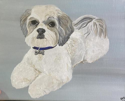 Mr. Princeton Dog Pet Portrait