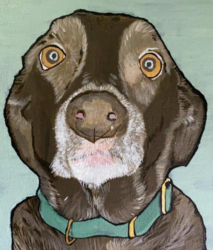 Chocolate Lab Dog Pet Portrait