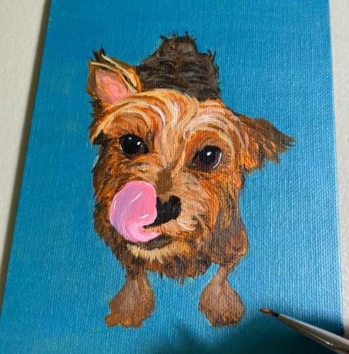 Bunny Yorkie Dog Portrait
